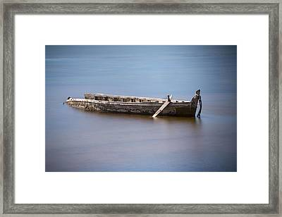 Past Its Best. Framed Print