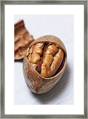 Pecan Nut Framed Print by Donald  Erickson