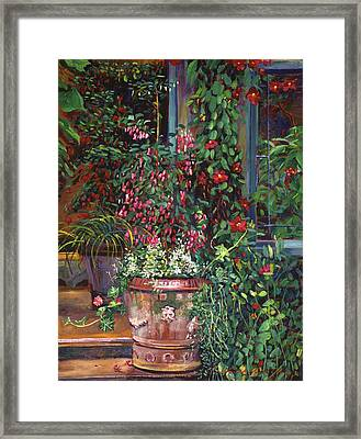 Pot Of Fuschia Flowers Framed Print by David Lloyd Glover
