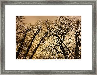 Quarrel Framed Print