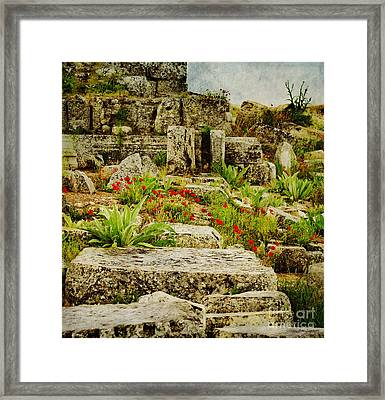 Red Poppies And The Ruins Of Ancient Laodicea Framed Print by MaryJane Armstrong