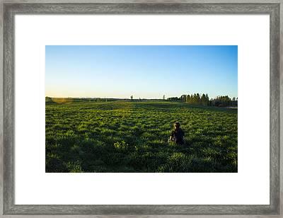 Relaxing Framed Print by Evaldas Slizauskas