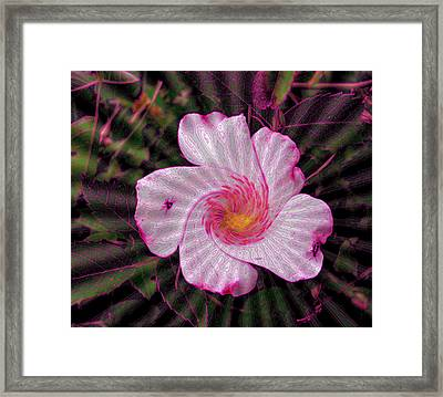 Framed Print featuring the photograph  Rippling Pink by Yolanda Raker