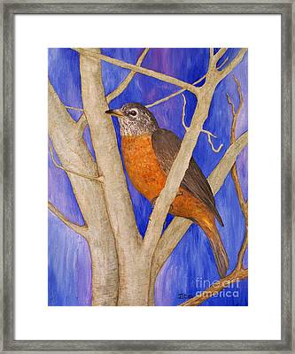 Rob Framed Print by Jane Chesnut