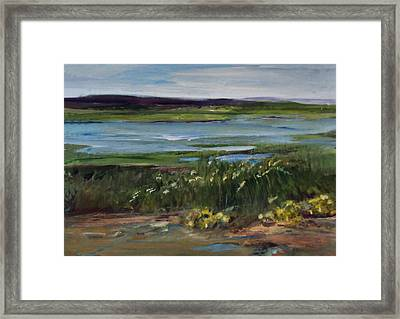Salt Marsh Framed Print by Diane Ursin