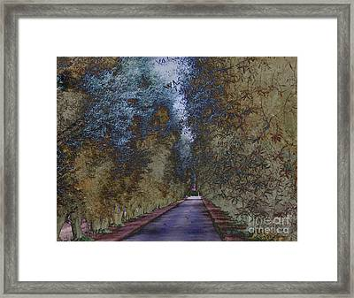 Framed Print featuring the photograph  Serenity   by Irina Hays