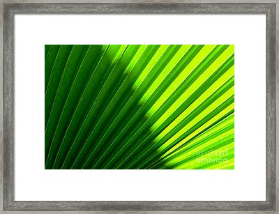 Simply Green Framed Print by Michelle Meenawong