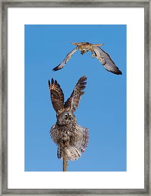Sky Battle Framed Print by Mircea Costina Photography
