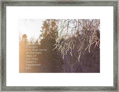 Snow Falling From A Tree Branch Framed Print