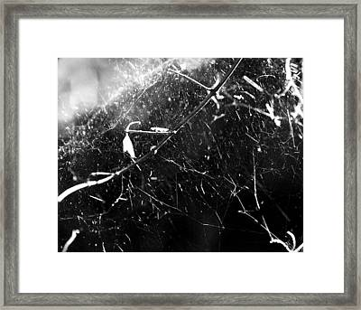 Framed Print featuring the photograph  Spidernet by Yulia Kazansky