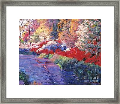 Spring Azalea Reflections Framed Print by David Lloyd Glover