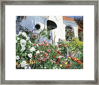 Summer Garden Flowers Framed Print by David Lloyd Glover