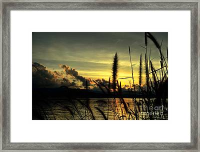 Sunset Framed Print by Michelle Meenawong