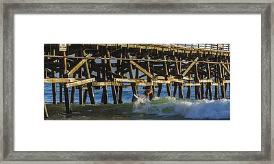 Surfer Dude 5 Framed Print by Scott Campbell