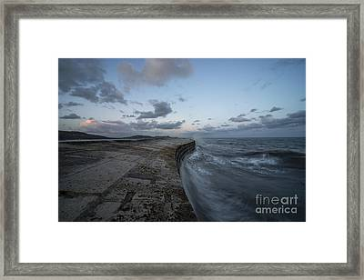 The Cobb At Lyme Regis  Framed Print by Rob Hawkins