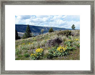 The Hills Are Alive Framed Print by Will Borden
