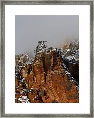 Framed Print featuring the photograph  The Lone Tree In Oak Creek by Tom Kelly