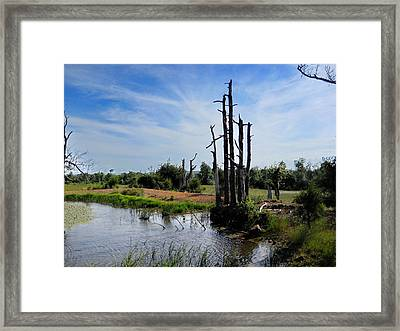 Framed Print featuring the photograph  The Mighty Shall Stand by Yolanda Raker
