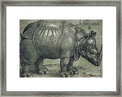 The Rhinoceros Framed Print by Albrecht Durer