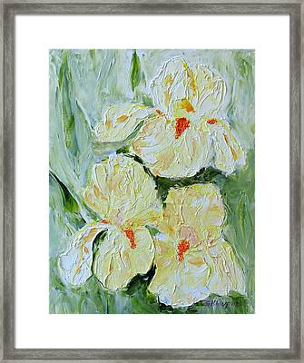 Three Yellow Irises Framed Print