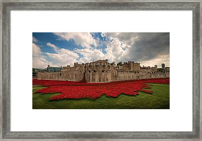 Tower Of London Remembers.  Framed Print