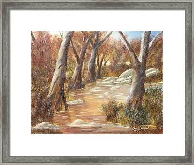 Tranquility Framed Print by Lou Magoncia
