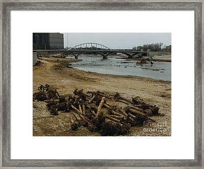 Tree Murder And Lowhead Dam Removal Columbus Ohio Usa 17 Framed Print