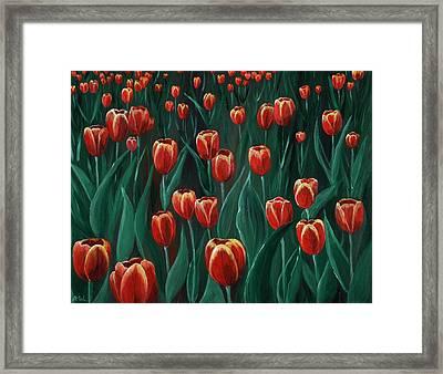 Tulip Festival Framed Print