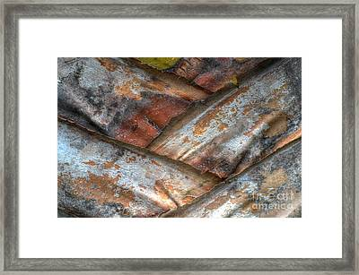 V Form Framed Print by Michelle Meenawong