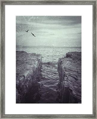Vermont Lake Champlain Shoreline Black And White Framed Print by Andy Gimino