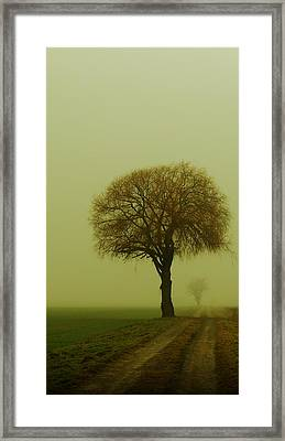 Framed Print featuring the photograph  Walk In The Fog by Franziskus Pfleghart