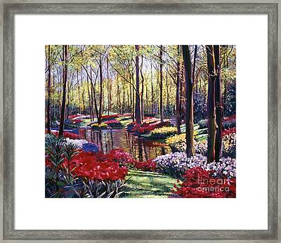 Water Romance Framed Print by David Lloyd Glover