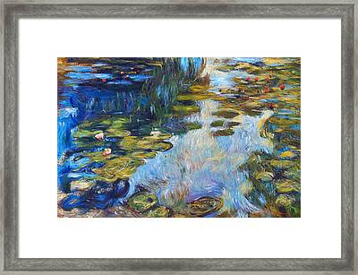 Waterlily Reflections Framed Print by David Lloyd Glover