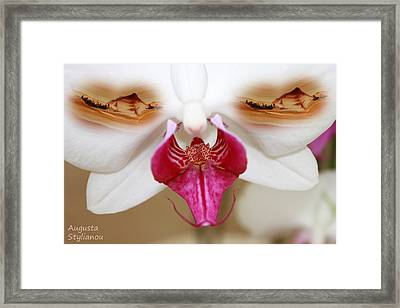 White Orchid And Landscapes Framed Print
