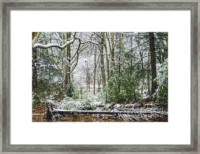Williams River Snow Framed Print by Thomas R Fletcher