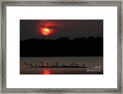 0016 White Rock Lake Dallas Texas Framed Print