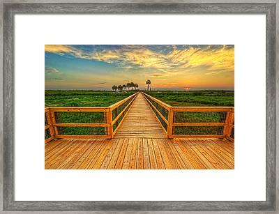 0061-65-143 Framed Print