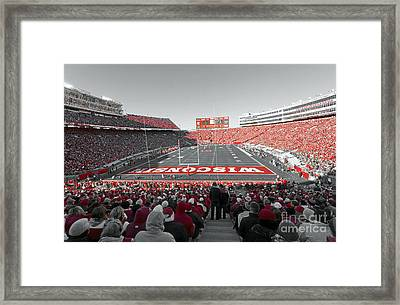 0096 Badger Football Framed Print