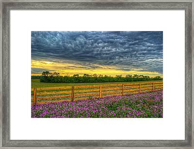 0102-8-70 Framed Print