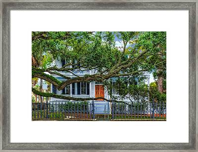 Surrounded By A Giant Oak Tree Framed Print by Frank J Benz
