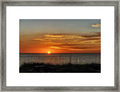 Warm Glow Of The Sun Framed Print