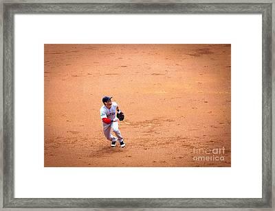 0233 Pop Fly Framed Print by Steve Sturgill
