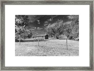 0254-256-220 Framed Print