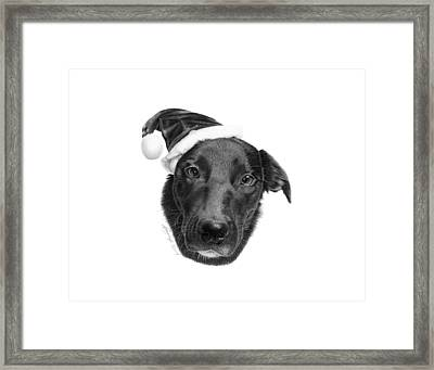 039 - 2014 Emmie Christmas Framed Print by Abbey Noelle