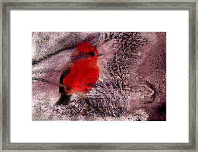 0417 Framed Print by I J T Son Of Jesus