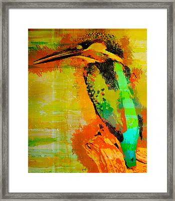 0453 Framed Print by I J T Son Of Jesus