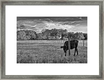 0570-223-bandw Framed Print