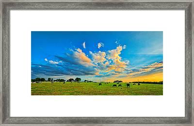 0634-636-224 Framed Print