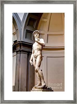 0768 Statue Of David Framed Print by Steve Sturgill