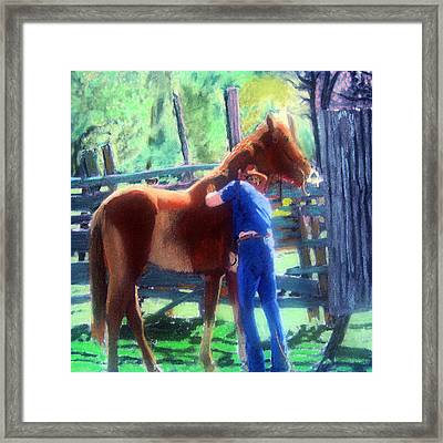 092814 Louisiana Cow Boy Framed Print